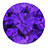 Amethyst (7)